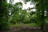 ogrod-w-maju-03