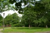 ogrod-w-maju-05