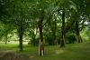 ogrod-w-maju-07