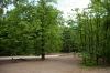 ogrod-w-maju-12