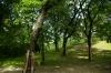 ogrod-w-maju-06