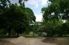 ogrod-w-maju-09