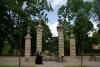 ogrod-w-maju-11