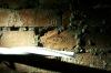 tunel-i-ruiny-palacu-saskiego-2008-06